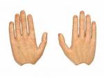 Руки №1z