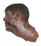 Голова №22